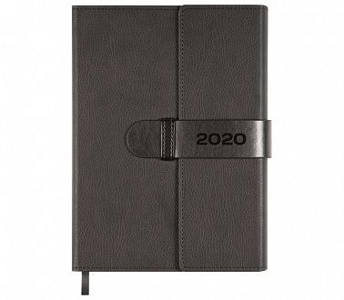 Ежедневник 2020 Tudor