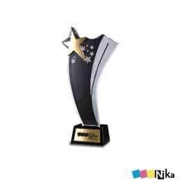 Награда из акрила 3