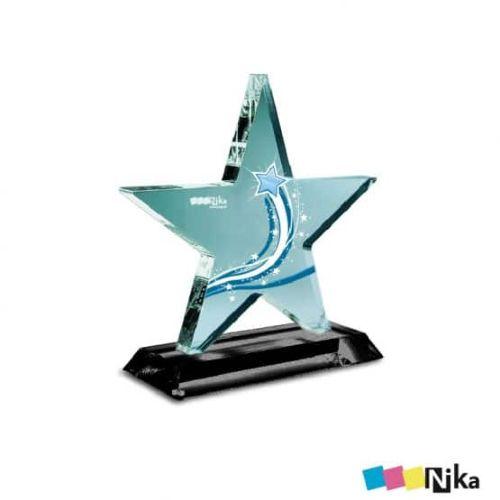 Награда из акрила 6